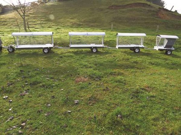 Wheeled Feeders - Wheeled Feeders in a row